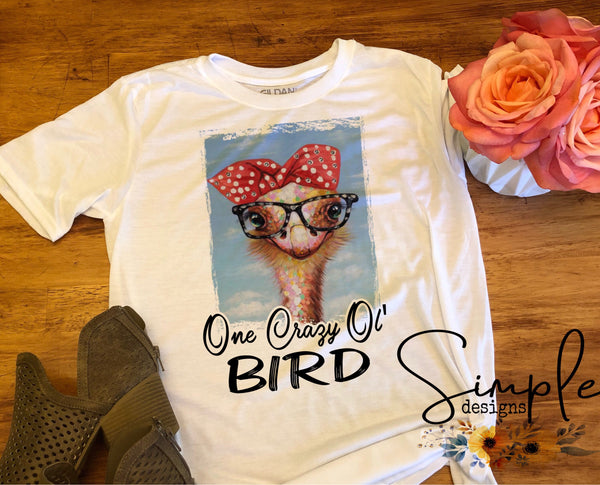 One Crazy Ol Bird T-shirt, Mama, Momma, Mother, Mom, Madre, Mother's Day