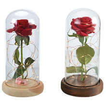 Load image into Gallery viewer, Enchanted Rose Flower Lamp