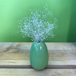 HD-51 Preserved Baby's Breath with Vase