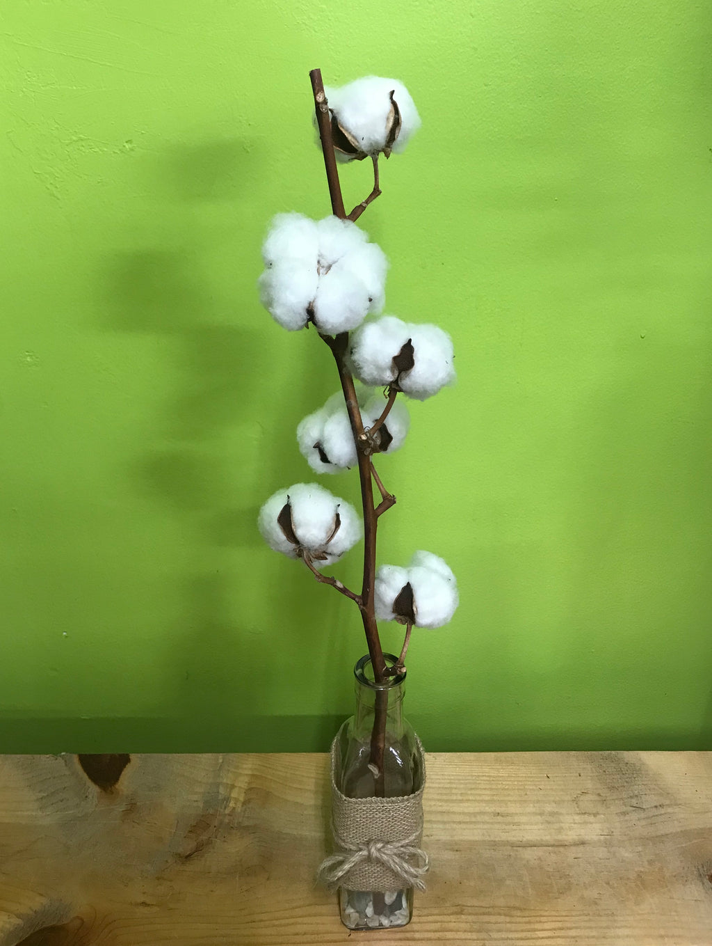 HD-37 Dried Cotton Vase