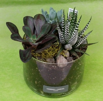HP-021 Succulent Planter
