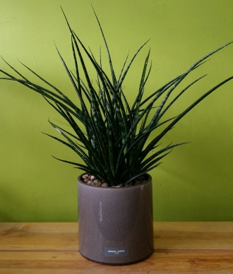 HP-043 Stuckyi Planter