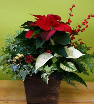 HX-04 Christmas Planter