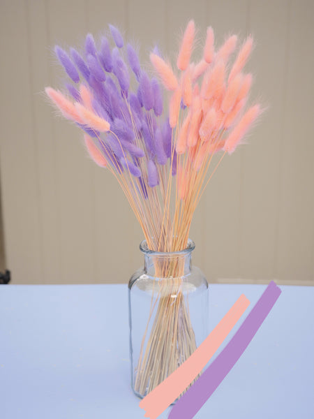 Bunch of Dried Lilac & Pink Bunny Tails