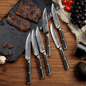 Steel Knives - 6PCS Steak Kitchen Knife Gift Box Set Japanese 73-Layer Damascus VG10 Steel Razor Sharp