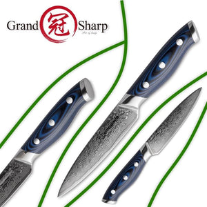Steel Knives - Japanese VG10 Stainless Steel Knife 4 Pcs Set Damascus - 67 Layers