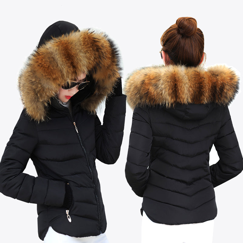 Female Warm Winter Jacket 2018 Fashion Women Hooded Fur collar Down Cotton Coat Solid color Slim Large size Female Coat