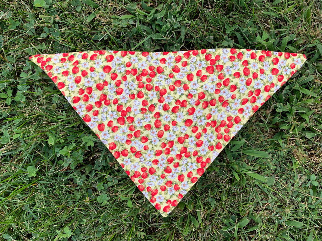 Strawberry Field Pet Bandana