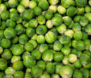 Brussel Sprouts Long Island Non GMO Seeds - Brassica Rapa