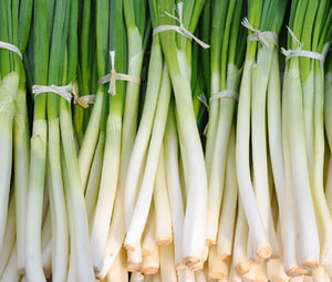 Onion Bunching He Shi Ko Organic Bulk Seeds - Allium Cepa
