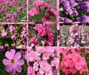 Wildflower Mix Pink Seeds