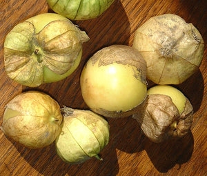 Tomatillo Green Organic Seeds - Physalis Philadelphica 2