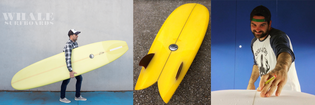 Whale Surfboards