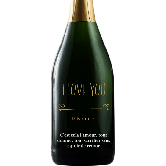 Personalized Etched Champagne Bottle Gift  - Infinite Love