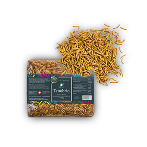 Organic Edible Mealworms Lyophilized | Tenebrio Molitor | Swiss production