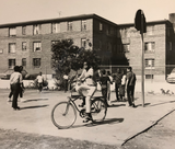 Basketball and Bikes, Roxbury 1960
