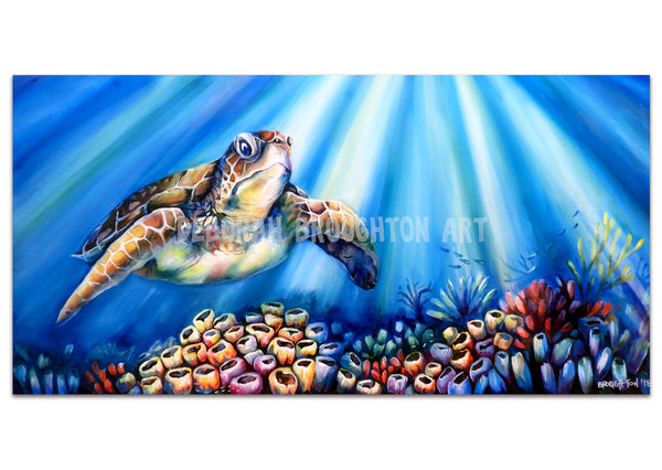 Canvas Print: Turtle Reef Magic