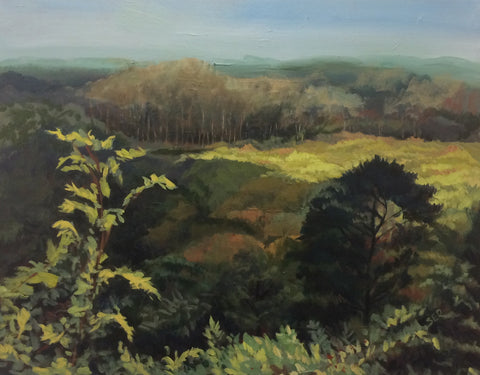 """Green Meadow"" 