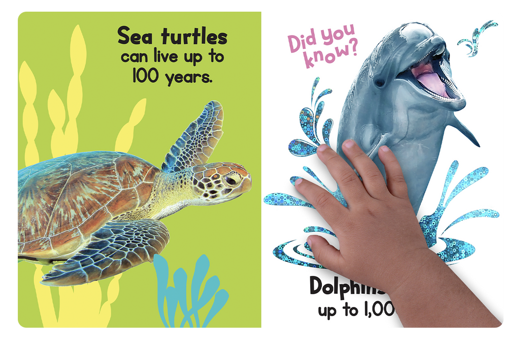Touch and Fell Ocean Friends by Little Hippo Books