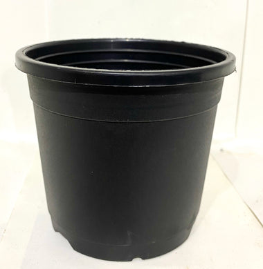 "Sunrise Pot 4"" (10 cms) - Nursery Pot"