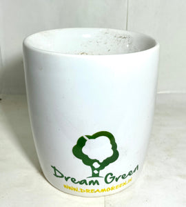 Classic White Planter Sleek (Dream Green)