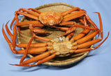 Assorted Red snow crab shell
