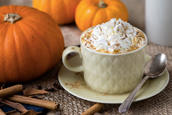 Pumpkin Spice Drink Recipe