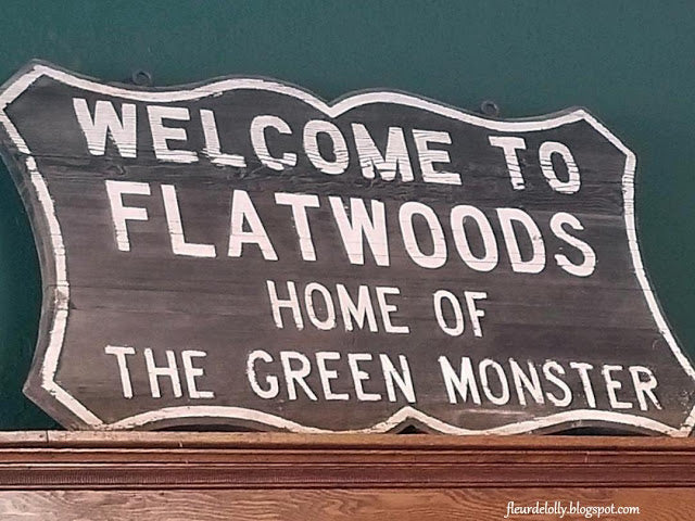 I Pulled Over For This:  Flatwoods Monster Museum, Sutton, WV