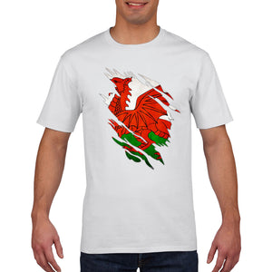 Wales T Shirt TORN Rugby 6 Nations Tshirt Top Cymru Football Gift Mens Boys 850