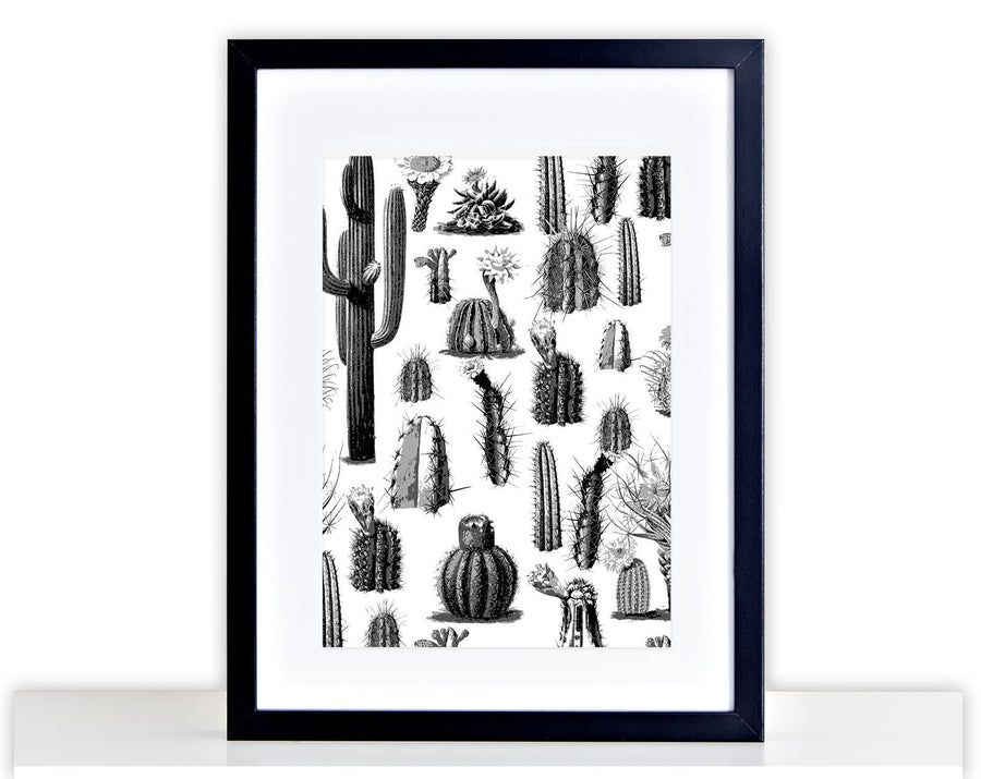 Black and White Cactus Poster Print Home Frame Mounted Photo Gift Picture 289