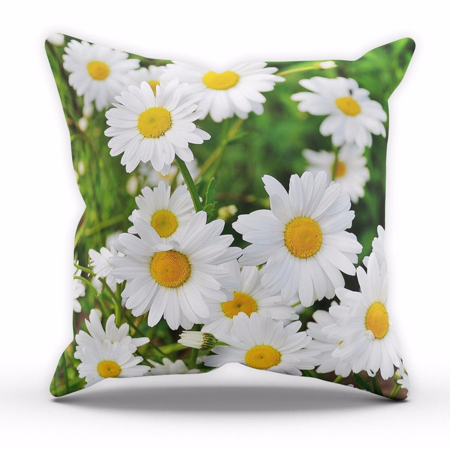 Fresh DAISY Flowers Cushion Floral Pattern Kitchen Lounge Novelty Pillow C29
