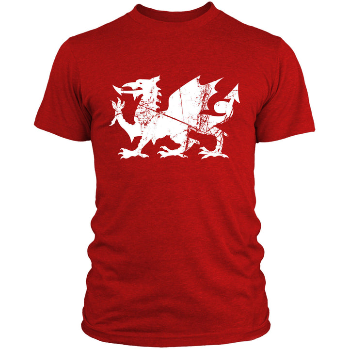 Wales Dragon T Shirt Rugby Football Men Women Kids 6 Nations Red Top Welsh L10