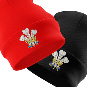 Wales Beanie Hat Cymru Am Byth Winter Prince of Wales Feathers Rugby Cap Beenie