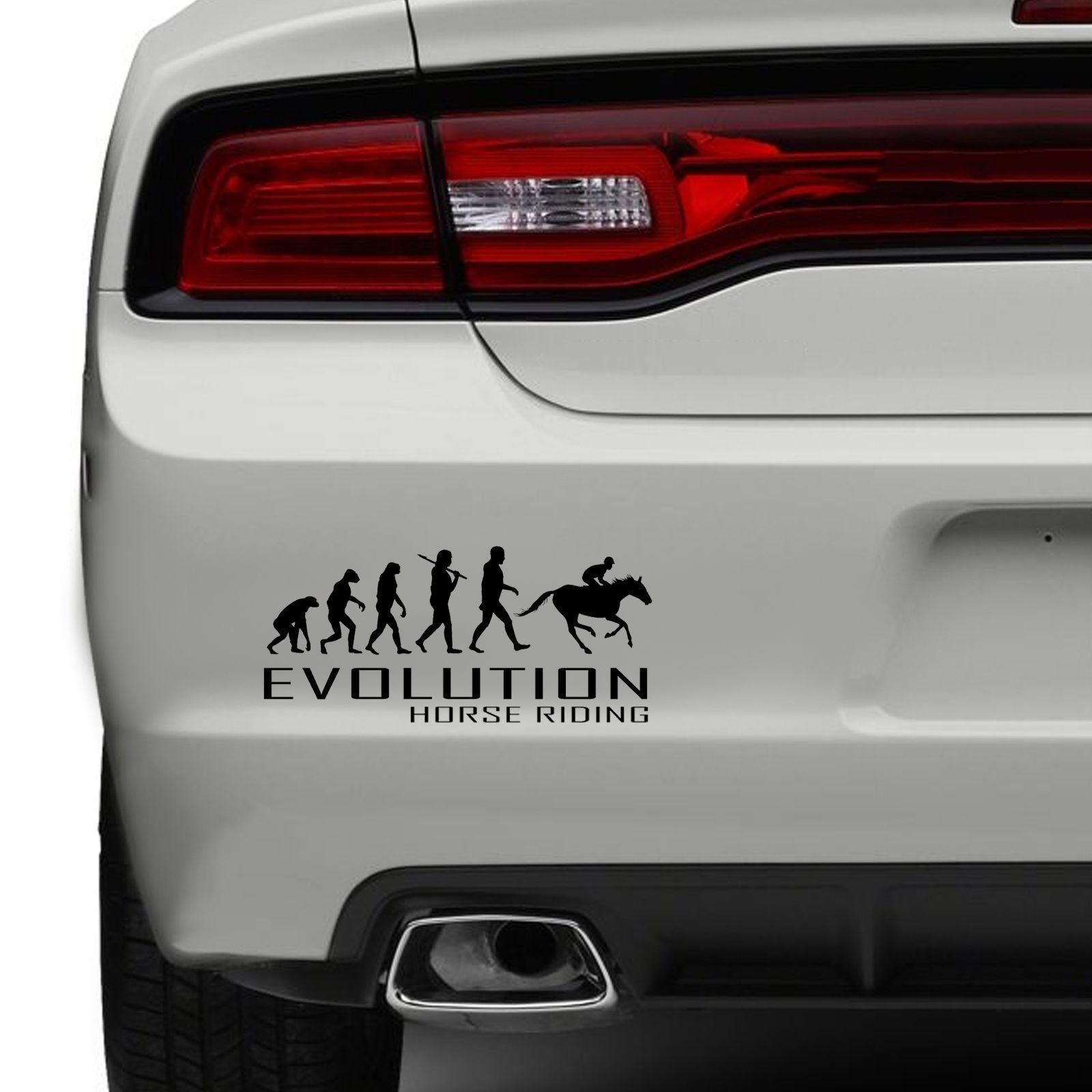 Evolution of horse riding car bumper sticker ride jockey tail funny vinyl window the clothing shed