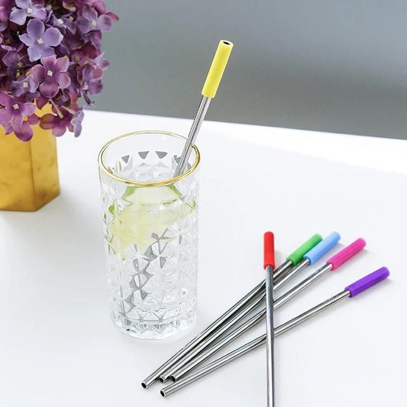 Metal Straws Set with Removable Silicone Tips