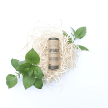 Lip Balm with Sheabutter - Spearmint - BioBunnies