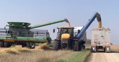 Walkabout Motherbin Increasing Efficiency During Harvest