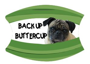 Mask Back Up Buttercup Pug Includes Shipping