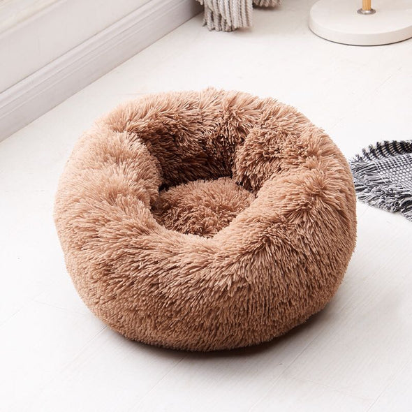 ( 50% OFF) Amazingly Comfortable Dog Bed