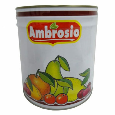 AMBROSIO AMBROGEL     4.7 KG (1 in a box)