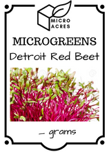 Load image into Gallery viewer, Detroit Red Beet Seed Packet (50 grams)