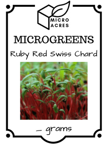Ruby Red Swiss Chard Seed Packet
