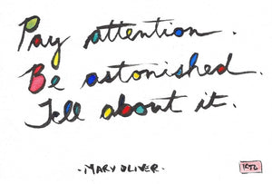 Pay Attention. Be astonished. Tell about it.
