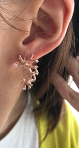 Cubic Zirconia & Rose Gold- plated Silver Earrings BLC