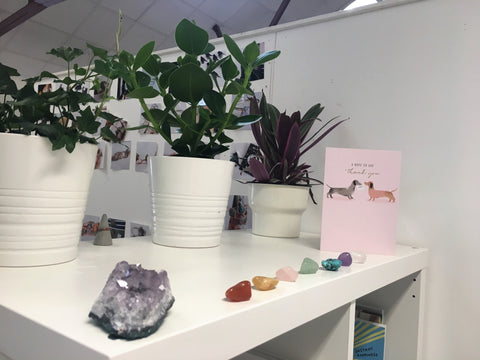 Plants and crystals