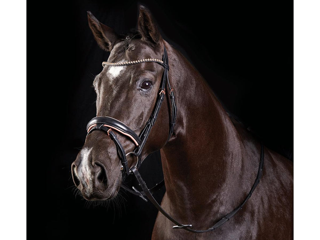 Collegiate Rose Gold Crystal Flash Bridle