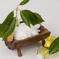 camphor for hair