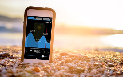Best Beachcombing Apps