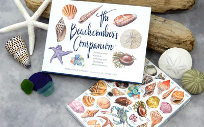 Products We Love: Beachcombing and Beach Decor Books
