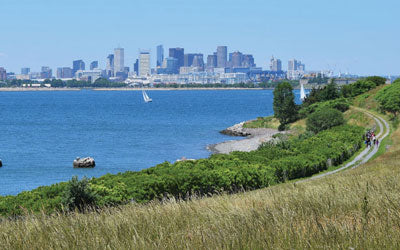 A Sight to Behold:  Boston Harbor's  Spectacle Island